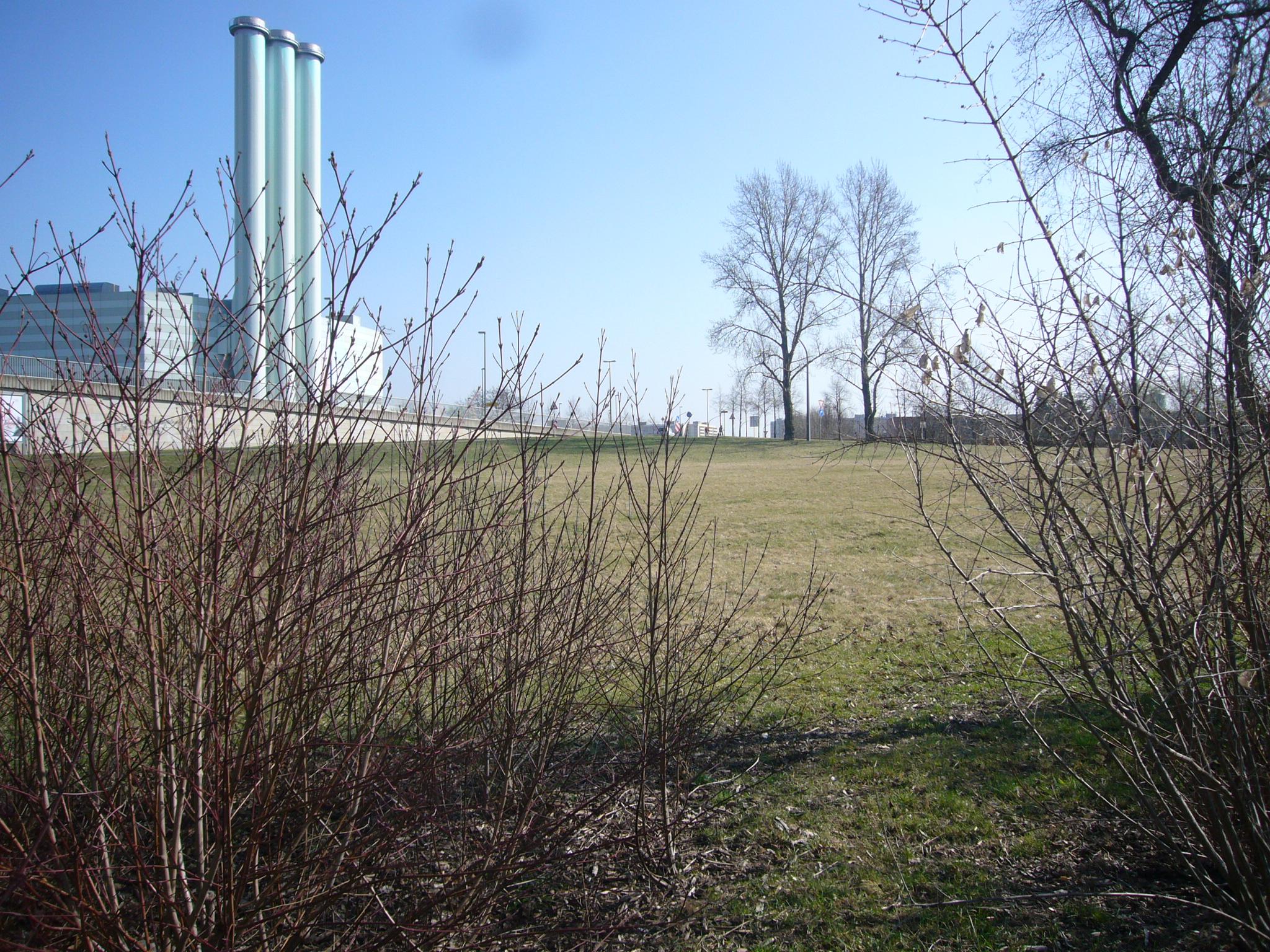 Grünzug Weißeritz: Floßhofterassen und Ebertplatz 2012